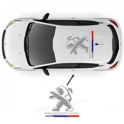 Peugeot Sport de toit version 2016