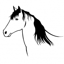 Cheval 8