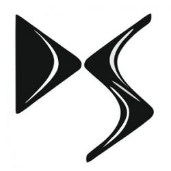 DS logo 1