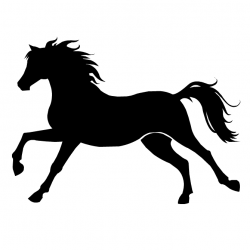 Cheval 14