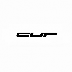 Lotus 410 CUP