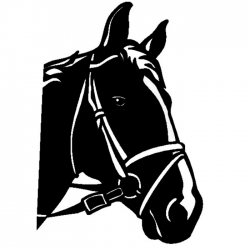 Cheval 5