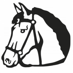 Cheval 10