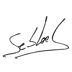 Citroen Sebastien Loeb