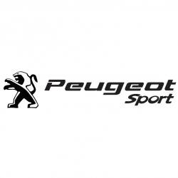 Peugeot Sport Design Lion