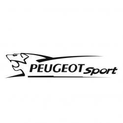 Peugeot Sport V2