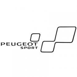 Stripping Peugeot Sport Gauche
